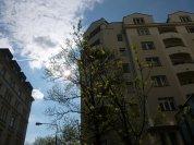 nieruchomość w Warszawie