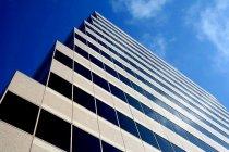 wieżowiec z firmami